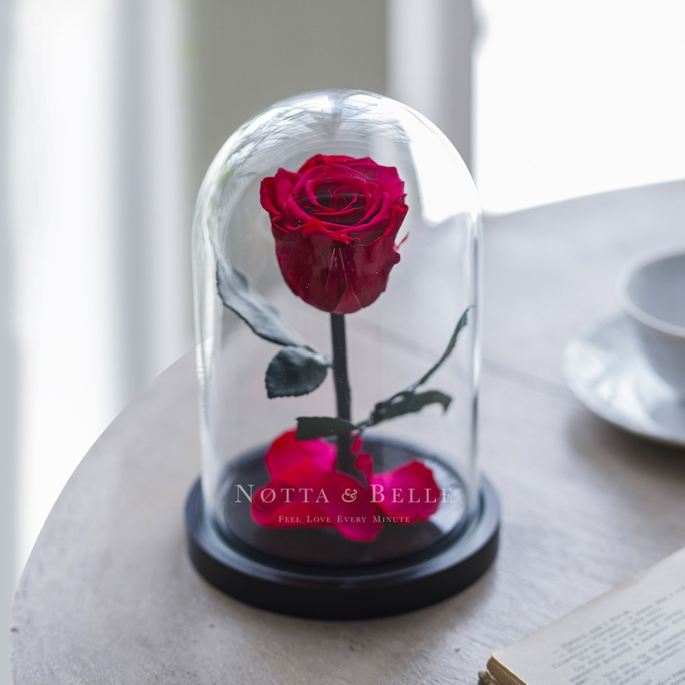 Unusual Gifts She Will Love01